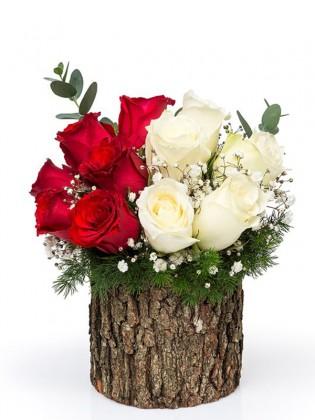 Ahşap Kütükte Beyaz Ve Kırmızı Güller