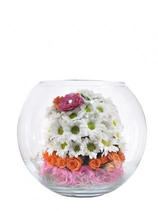 Berry Mevsim Çiçekleri