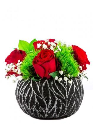 Red Kırmızı Güller