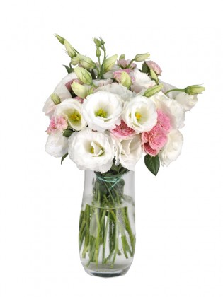 White Pink Happy Spring