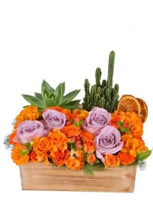 Lila OrangeFlowers